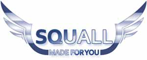 Squall Coin (SQL/USD)