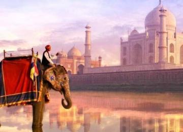 Индия становится центром маркетинга ICO для криптовалютных платформ