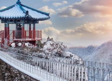 Главный финансовый регулятор Южной Кореи займется проверкой местных криптовалютных бирж