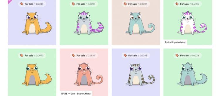 Котики завоевали сеть Ethereum
